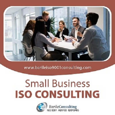 small-business-ISO-consulting